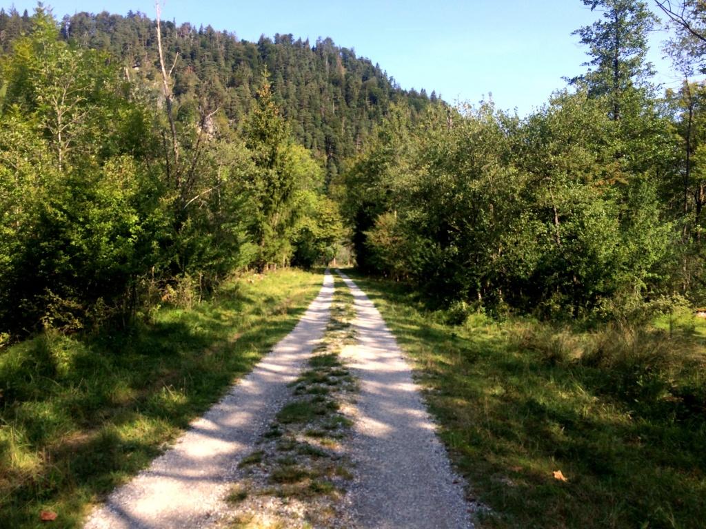 Der Radweg nach Eschenlohe